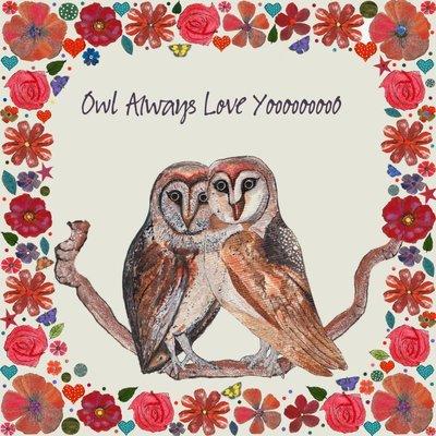 Aardappelkaart Owl
