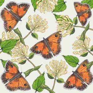 Aardappelkaart Vlinders
