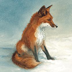 Kaart Red Fox