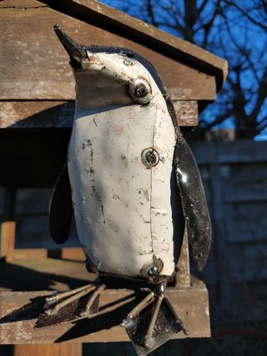 Pinguin klein